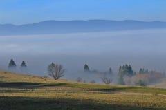 Paisaje de la montaña con niebla y árboles Imágenes de archivo libres de regalías