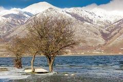 Paisaje de la montaña con nieve Imagen de archivo