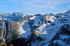 Paisaje de la montaña con nieve y árboles amarillos fotografía de archivo libre de regalías