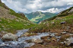 paisaje de la montaña con una corriente en el valle verde de la montaña Imagen de archivo libre de regalías