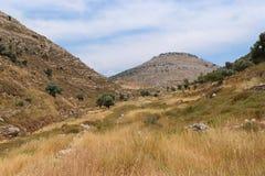 Paisaje de la montaña de Judea fotos de archivo libres de regalías