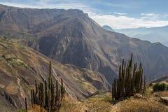 Paisaje de la montaña del barranco Cotahuasi Fotografía de archivo