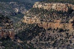 Paisaje de la montaña del desierto del parque nacional del verde del Mesa fotografía de archivo libre de regalías
