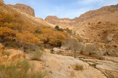 Paisaje de la montaña del desierto de Judea imágenes de archivo libres de regalías