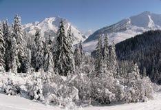 Paisaje de la montaña del invierno Foto de archivo libre de regalías