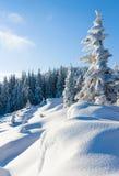 Paisaje de la montaña del invierno Imagenes de archivo