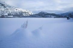 Paisaje de la montaña del invierno Fotografía de archivo libre de regalías