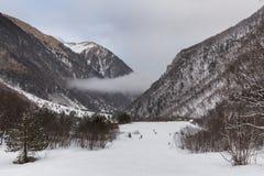 Paisaje de la montaña del invierno con el bosque del pino y del abedul Foto de archivo
