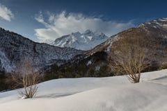 Paisaje de la montaña del invierno con el bosque del pino y del abedul Imagen de archivo