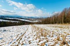 Paisaje de la montaña del invierno con el campo, la arboleda y el pueblo adentro lejos foto de archivo