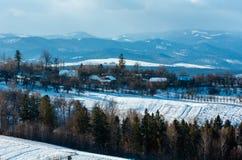 Paisaje de la montaña del invierno con el campo y el pueblo foto de archivo