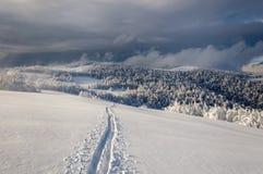 Paisaje de la montaña del invierno con funcionamiento de esquí solo Foto de archivo