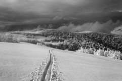 Paisaje de la montaña del invierno con funcionamiento de esquí solo Fotos de archivo