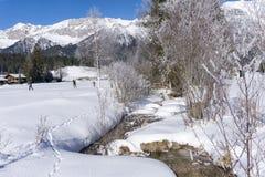 Paisaje de la montaña del invierno con la corriente y los abedules Fotos de archivo libres de regalías