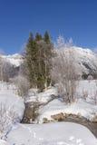 Paisaje de la montaña del invierno con los árboles de la corriente y de abedules Imagen de archivo libre de regalías