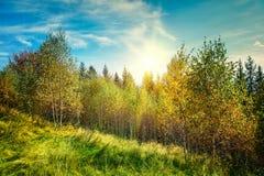 Paisaje de la montaña del otoño Fotografía de archivo