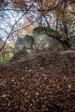 Paisaje de la montaña del otoño con las hojas caidas, los árboles coloridos y las rocas Fotos de archivo
