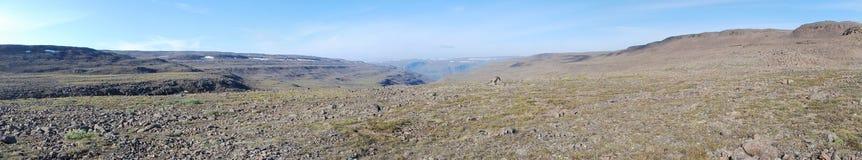 Paisaje de la montaña del panorama Imagenes de archivo