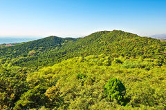 Paisaje de la montaña del pico del pareado de Beidaihe Foto de archivo