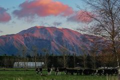 Paisaje de la montaña durante salida del sol cerca de Methven en Cantorbery, isla del sur, Nueva Zelanda imagenes de archivo
