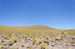 Paisaje de la montaña en el desierto de Atacama Foto de archivo