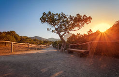 Paisaje de la montaña en la salida del sol Fotografía de archivo libre de regalías