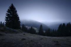 Paisaje de la montaña en la noche con niebla y árboles Foto de archivo libre de regalías