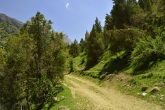 Paisaje de la montaña, garganta de Galuyan, Kirguistán Imagen de archivo
