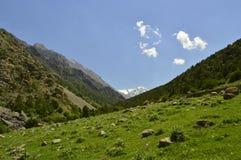 Paisaje de la montaña, garganta de Galuyan, Kirguistán Imágenes de archivo libres de regalías
