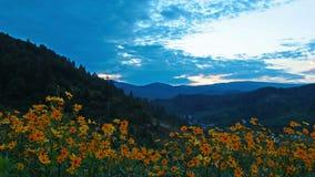 Paisaje de la montaña. 4K. HD LLENO, 4096x2304. Fotos de archivo libres de regalías
