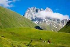 Paisaje de la montaña de los picos de Chauchi Foto de archivo libre de regalías