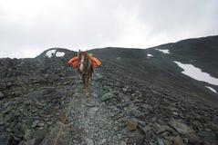 Paisaje de la montaña Montañas, los picos de montaña, gargantas y valles Las piedras en las cuestas Fotografía de archivo libre de regalías