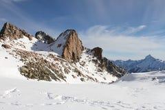 Paisaje de la montaña Nevado, cocinero National Park, Nueva Zelanda del sur del soporte Fotografía de archivo