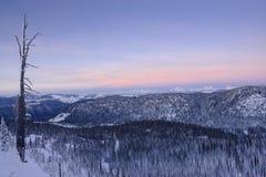 Paisaje de la montaña Nevado y árbol descubierto Imagenes de archivo