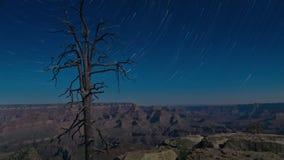 Paisaje de la montaña de la noche con los rastros en Grand Canyon, los E.E.U.U. de la estrella Lapso de tiempo metrajes