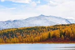 Paisaje de la montaña Otoño Foto de archivo libre de regalías