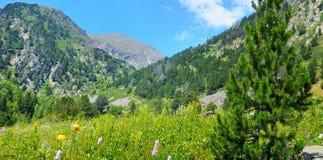 Paisaje de la montaña, prado, pista de senderismo y cielo hermoso wide fotografía de archivo