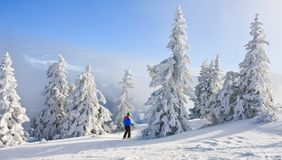 Paisaje de la montaña Schladming austria Imagen de archivo