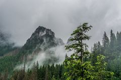 Paisaje de la montaña, valle, bosque con los árboles verdes y cielo azul hermoso con las nubes fotografía de archivo
