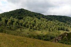 Paisaje de la monta?a cerca del territorio de Generalka Altai del pueblo del taiga en Siberia occidental fotografía de archivo libre de regalías