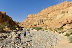 Paisaje de la monta?a del desierto foto de archivo
