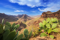 Paisaje de la montaña de la isla de Gran Canaria Fotos de archivo libres de regalías