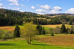Paisaje de la montaña de Radocelo en el día soleado del otoño Foto de archivo libre de regalías