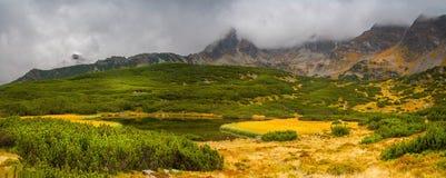 Paisaje de la montaña en un día nublado Imagen de archivo libre de regalías