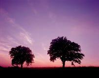 Paisaje de la naturaleza Fotos de archivo