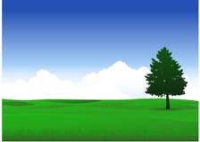 Paisaje de la naturaleza con el árbol solo stock de ilustración