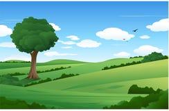 Paisaje de la naturaleza con el árbol solo ilustración del vector