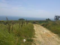 paisaje de la naturaleza con el camino de la perspectiva Foto de archivo