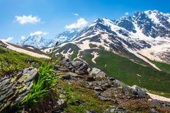 Paisaje de la naturaleza de las montañas Montañas alpinas en Austria foto de archivo libre de regalías