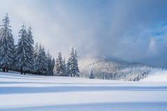 Paisaje de la Navidad con la picea en las montañas fotografía de archivo libre de regalías